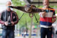 Dead Cat Copter!