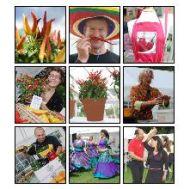 West Dean Chilli Festival Date Change