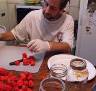 Carolina Reaper Seeds World's Hottest Chilli!