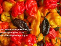 Hallertau's Chilli & Hope Fest